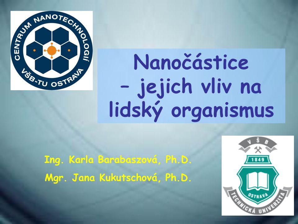 Nanočástice – jejich vliv na lidský organismus