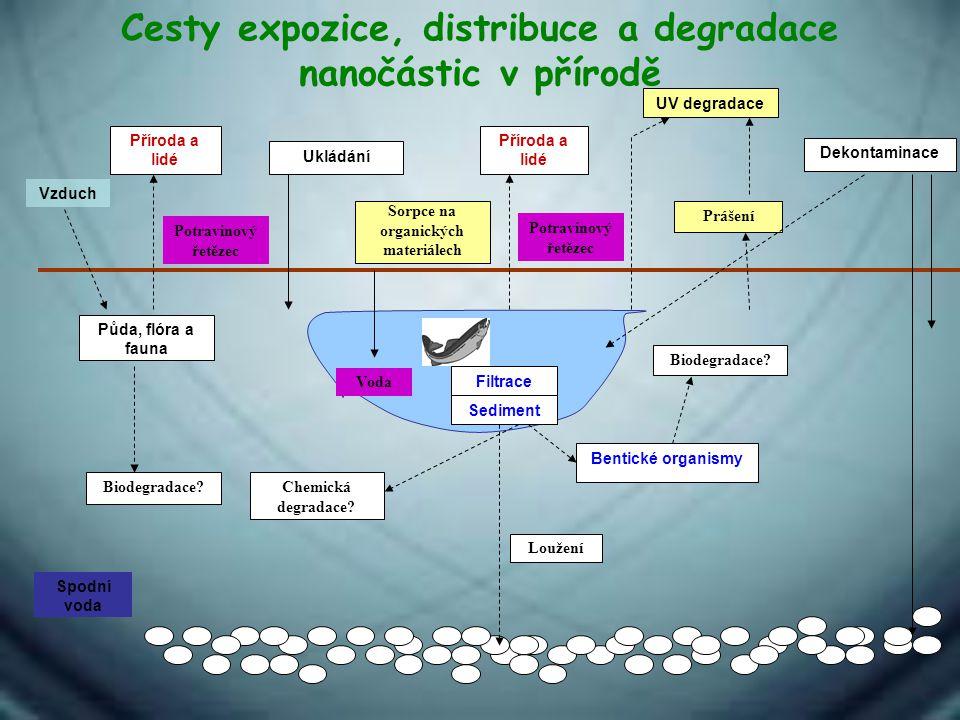 Cesty expozice, distribuce a degradace nanočástic v přírodě