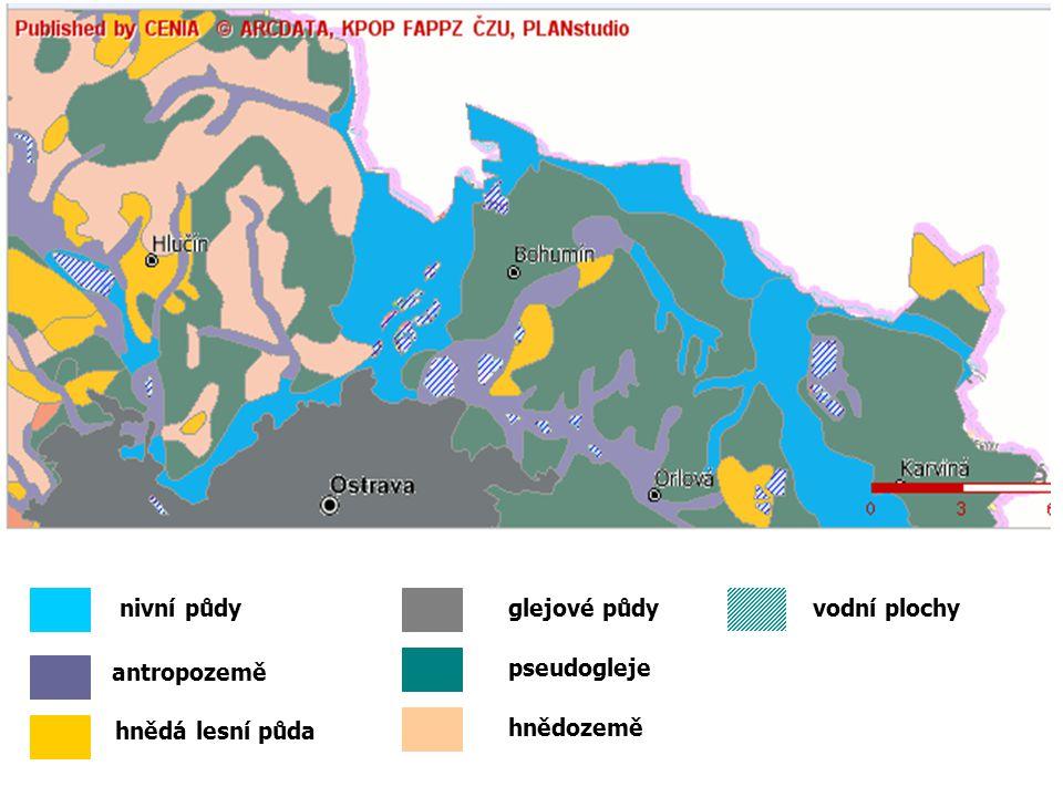 glejové půdy nivní půdy antropozemě hnědá lesní půda hnědozemě vodní plochy pseudogleje