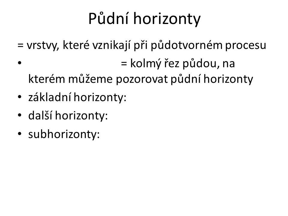 Půdní horizonty = vrstvy, které vznikají při půdotvorném procesu