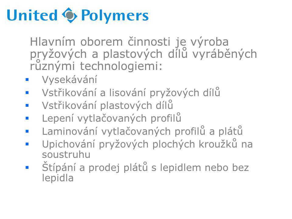Hlavním oborem činnosti je výroba pryžových a plastových dílů vyráběných různými technologiemi: