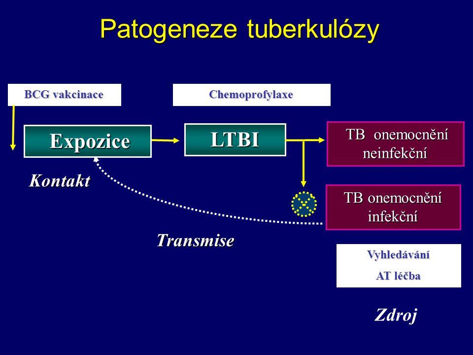 Patogeneze tuberkulózy