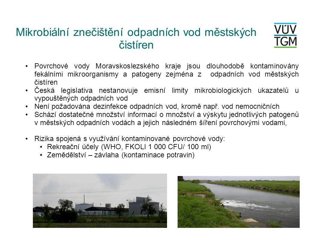 Mikrobiální znečištění odpadních vod městských čistíren