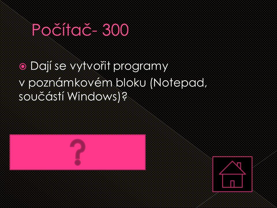 Počítač- 300 Dají se vytvořit programy