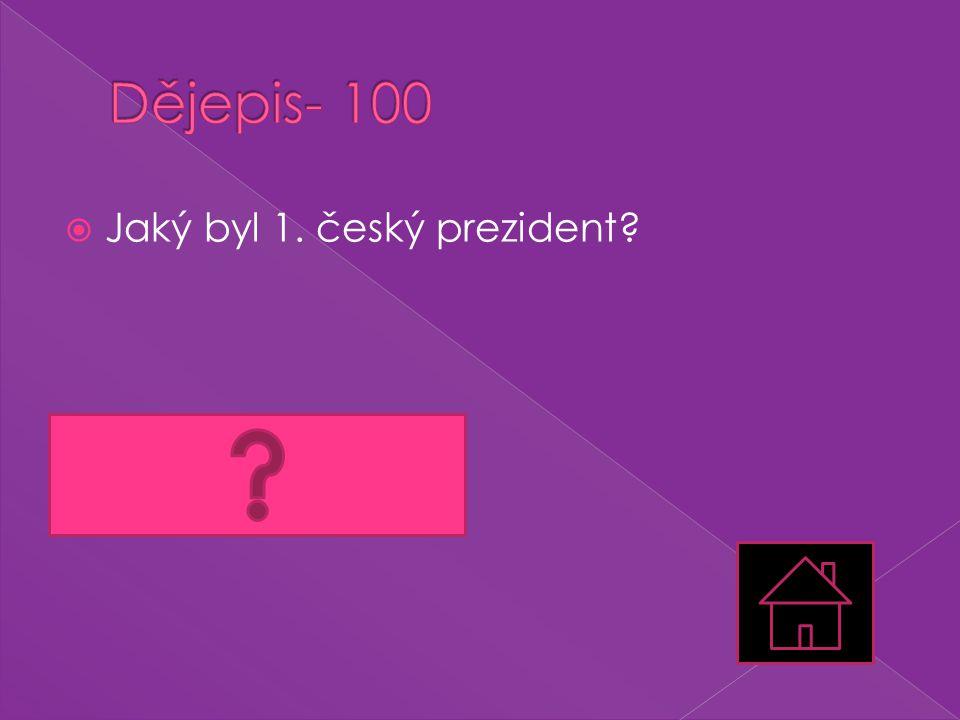 Dějepis- 100 Jaký byl 1. český prezident Václav Havel