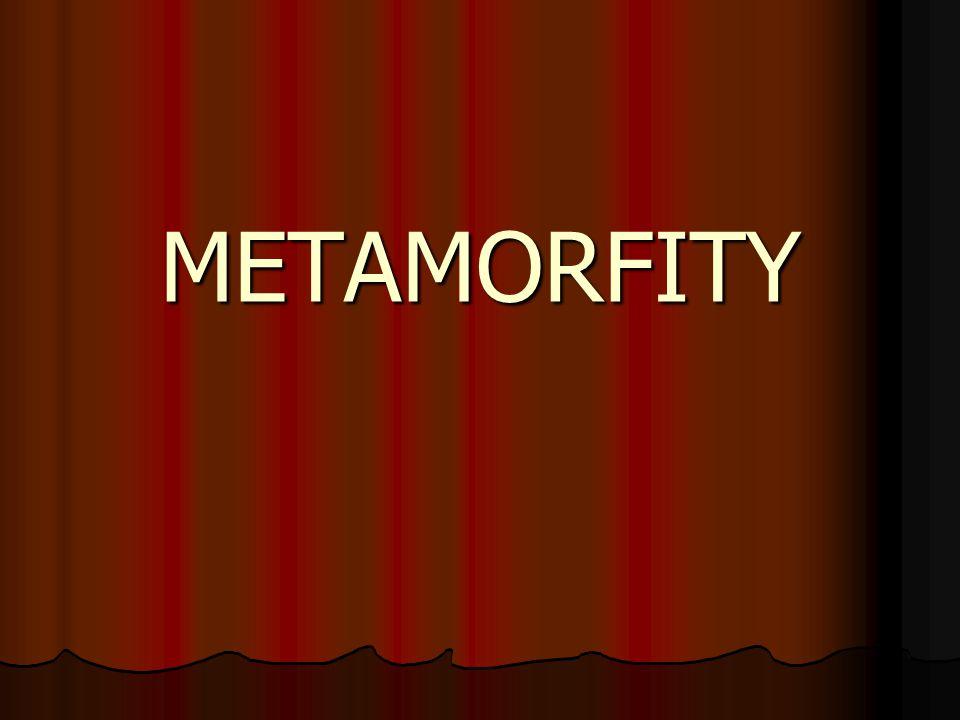 METAMORFITY