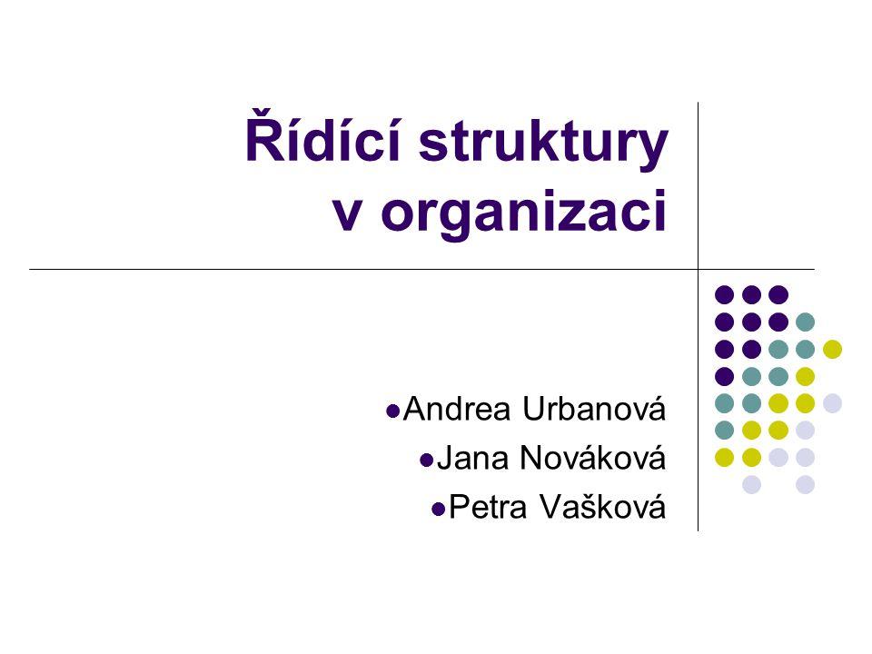 Řídící struktury v organizaci