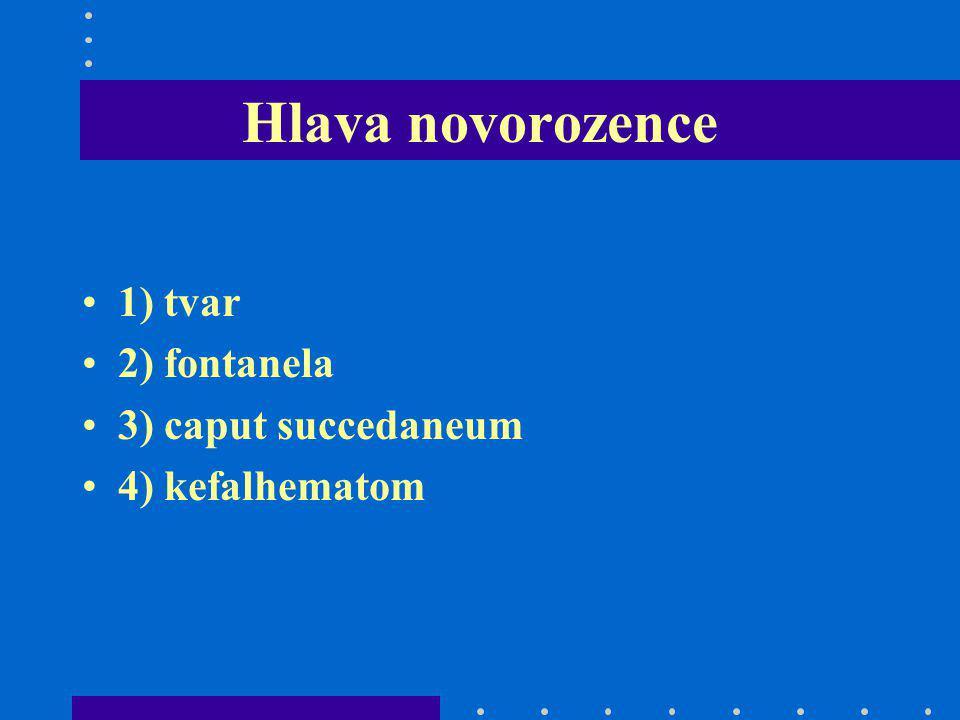 Hlava novorozence 1) tvar 2) fontanela 3) caput succedaneum