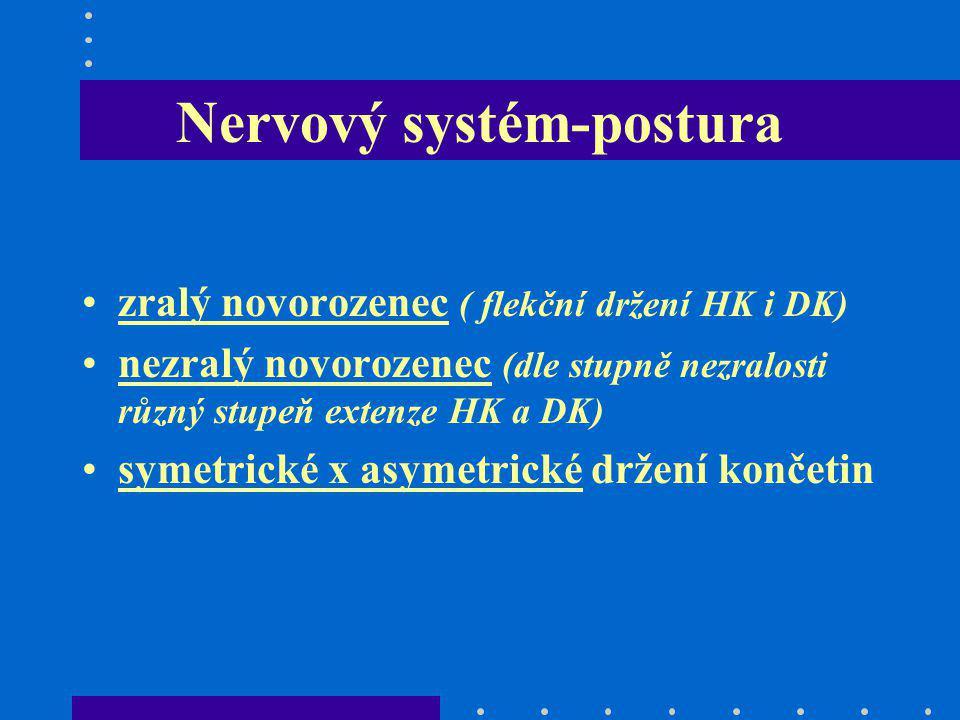 Nervový systém-postura