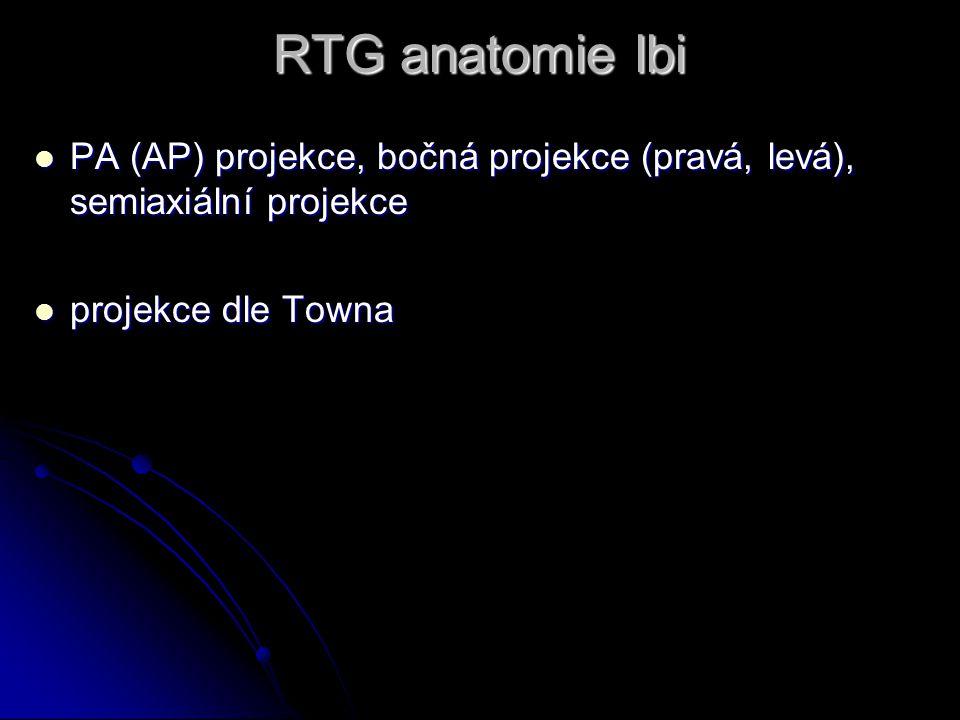 RTG anatomie lbi PA (AP) projekce, bočná projekce (pravá, levá), semiaxiální projekce.