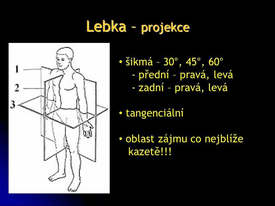Lebka – projekce šikmá – 30°, 45°, 60° - přední – pravá, levá