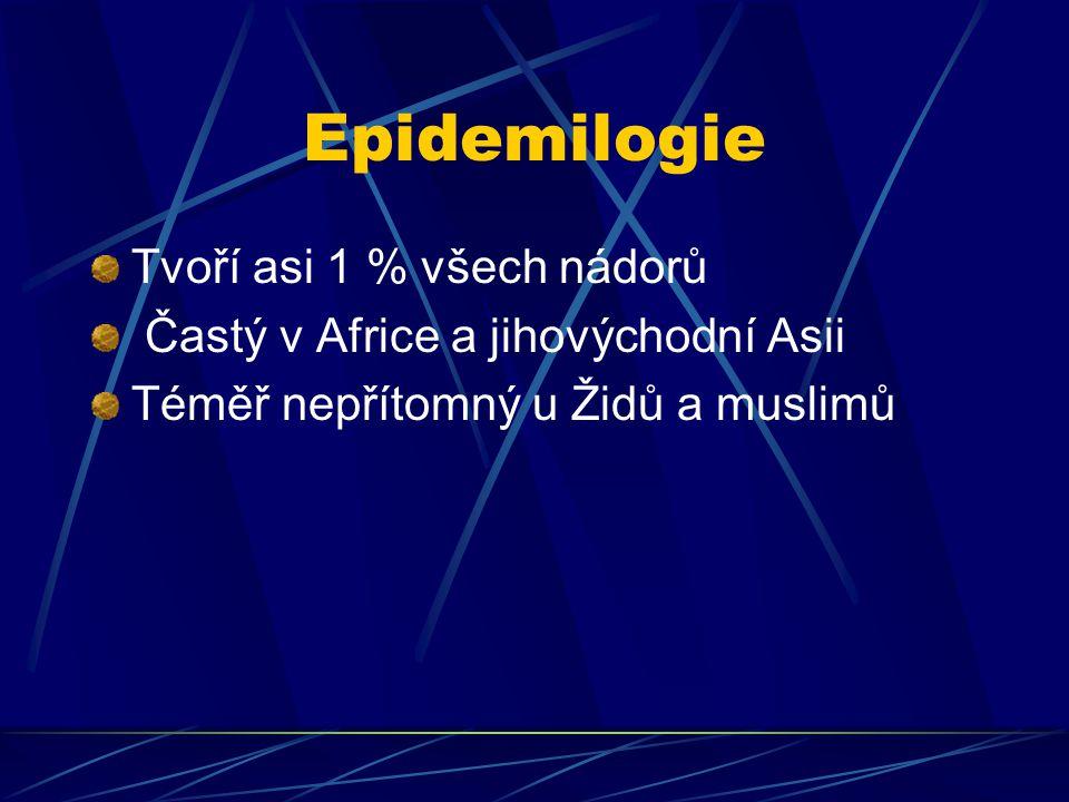 Epidemilogie Tvoří asi 1 % všech nádorů