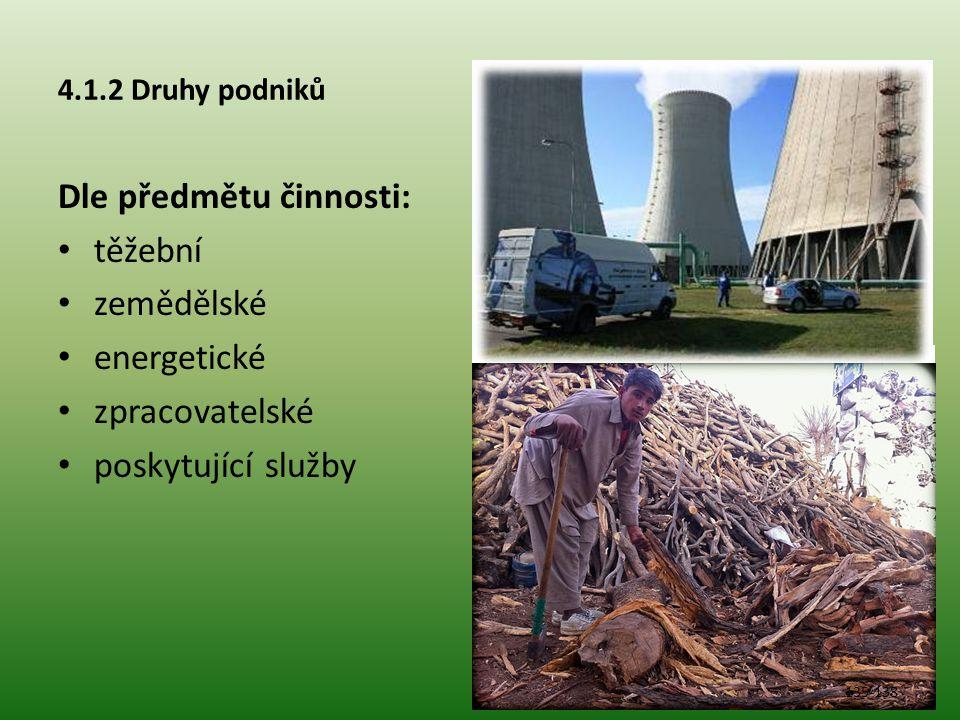Dle předmětu činnosti: těžební zemědělské energetické zpracovatelské