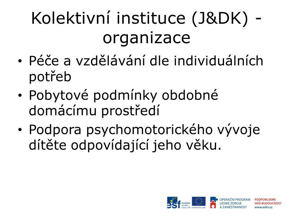 Kolektivní instituce (J&DK) - organizace