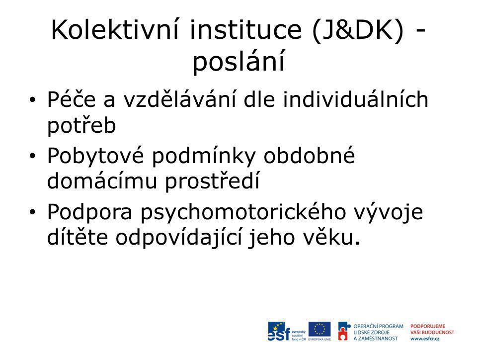 Kolektivní instituce (J&DK) - poslání