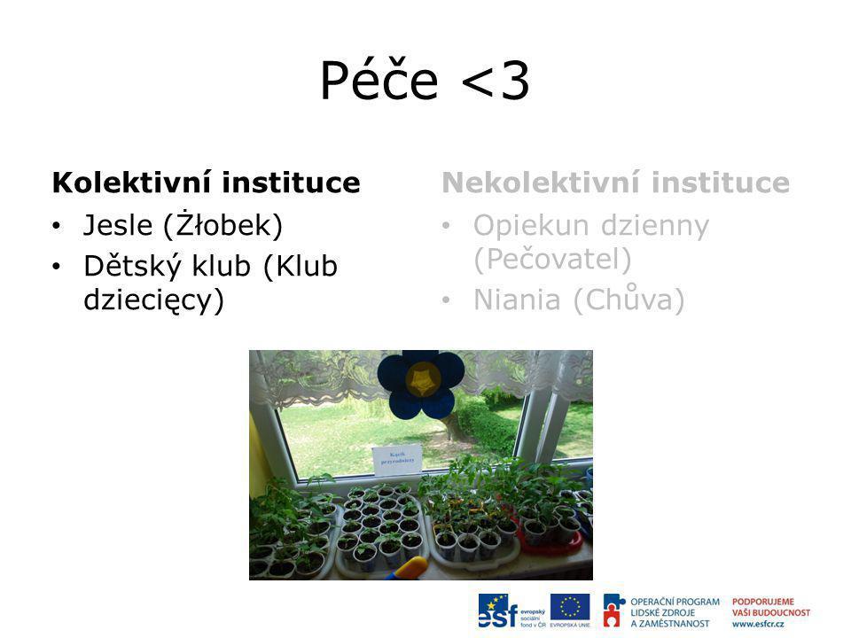 Péče <3 Kolektivní instituce Nekolektivní instituce Jesle (Żłobek)