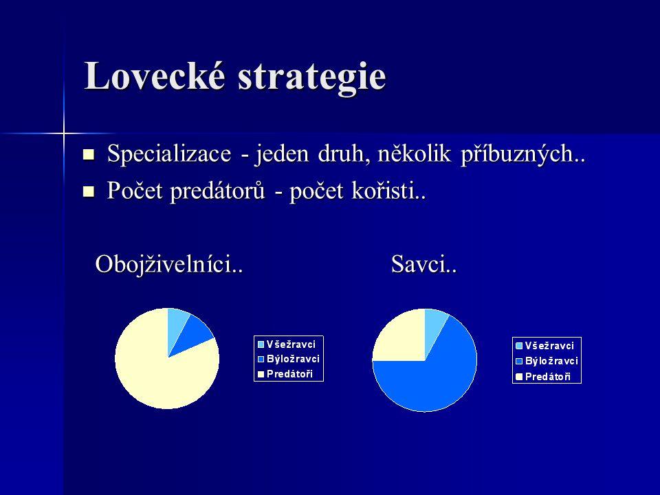 Lovecké strategie Specializace - jeden druh, několik příbuzných..