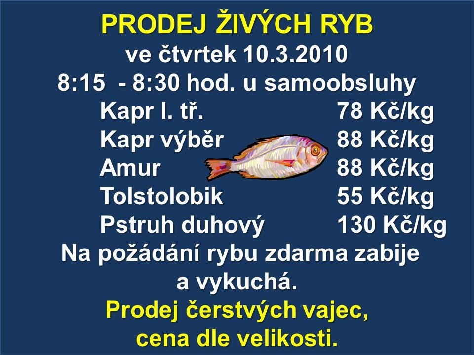 Na požádání rybu zdarma zabije Prodej čerstvých vajec,