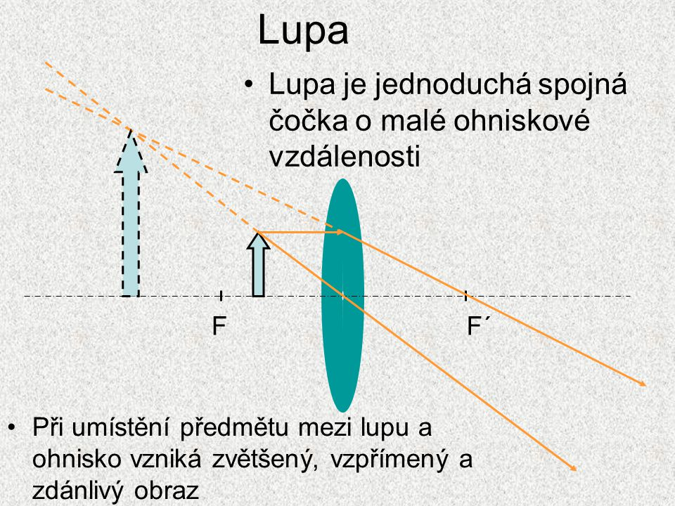 Lupa Lupa je jednoduchá spojná čočka o malé ohniskové vzdálenosti F F´