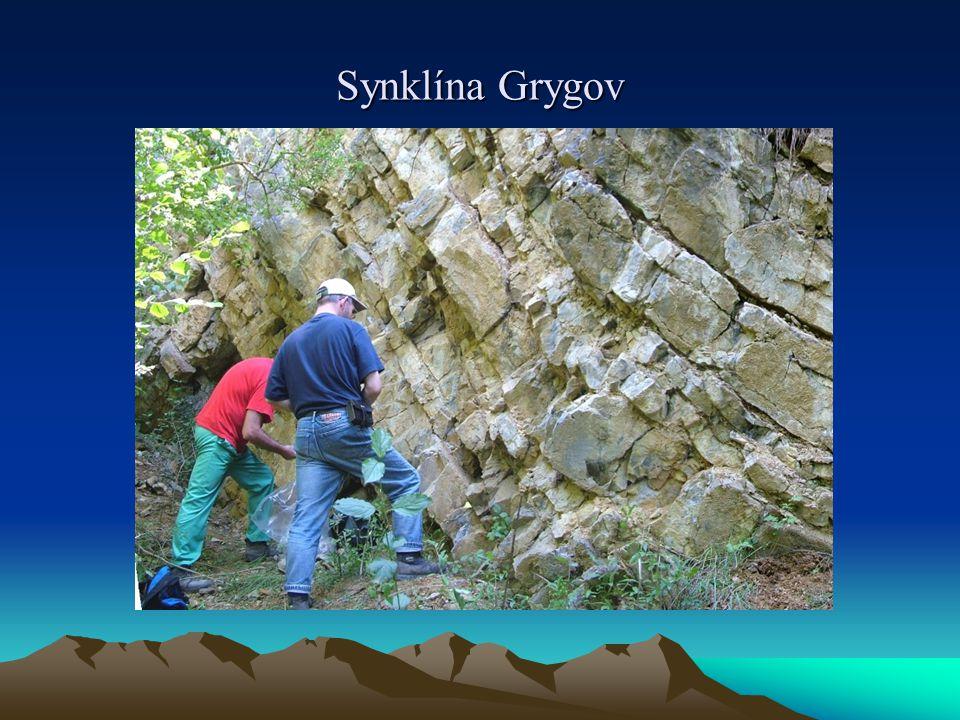 Synklína Grygov