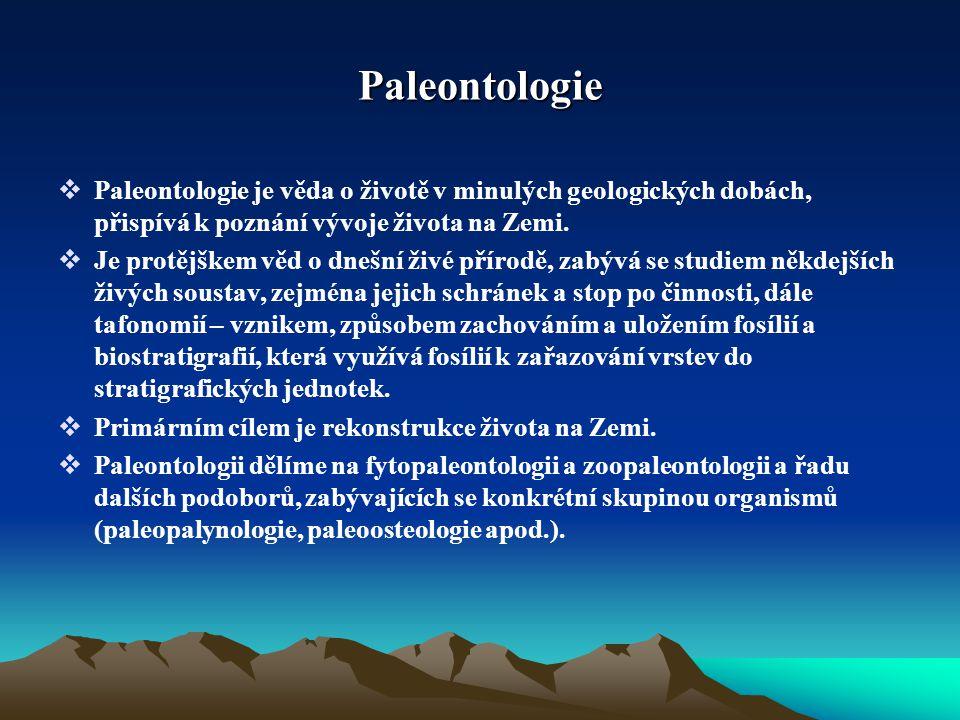 Paleontologie Paleontologie je věda o životě v minulých geologických dobách, přispívá k poznání vývoje života na Zemi.