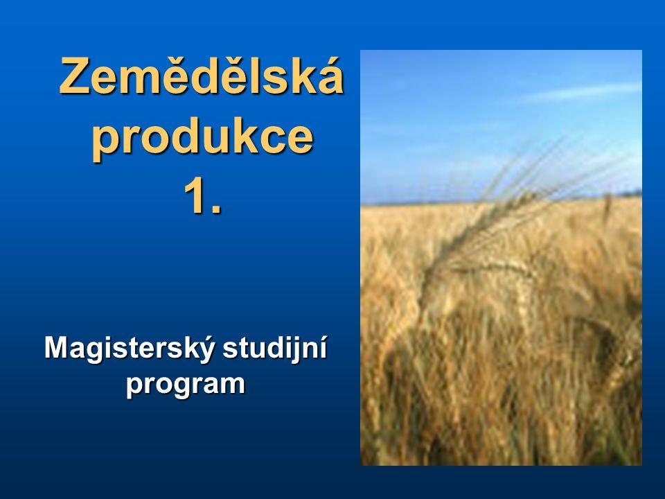 Magisterský studijní program