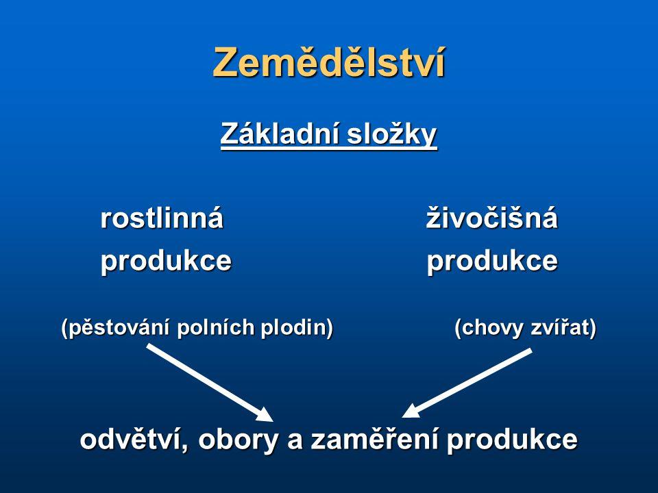 odvětví, obory a zaměření produkce