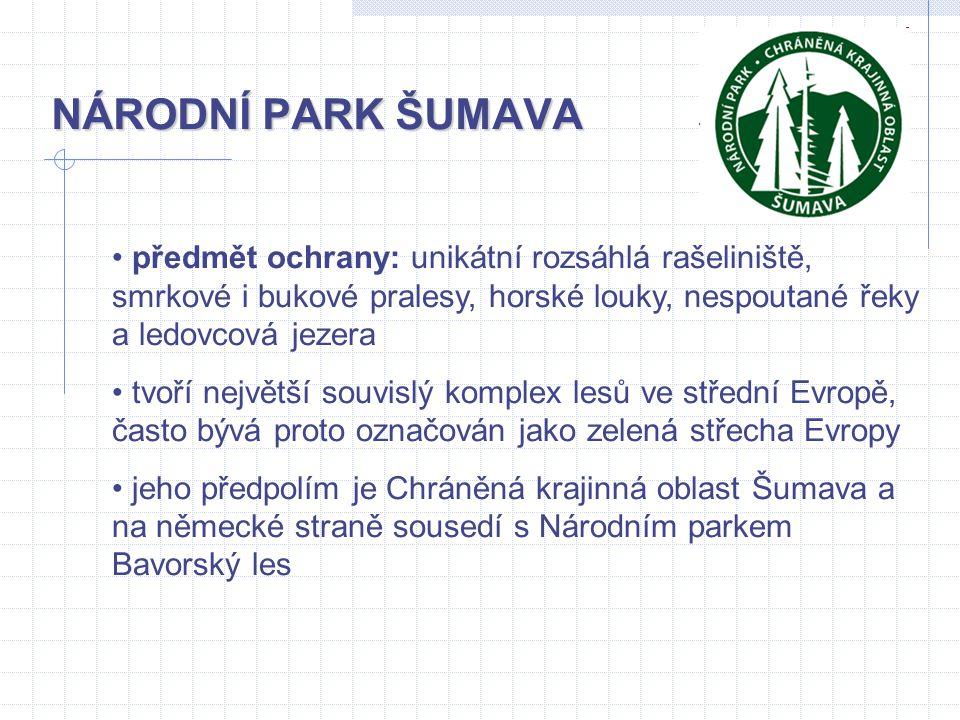 NÁRODNÍ PARK ŠUMAVA předmět ochrany: unikátní rozsáhlá rašeliniště, smrkové i bukové pralesy, horské louky, nespoutané řeky a ledovcová jezera.