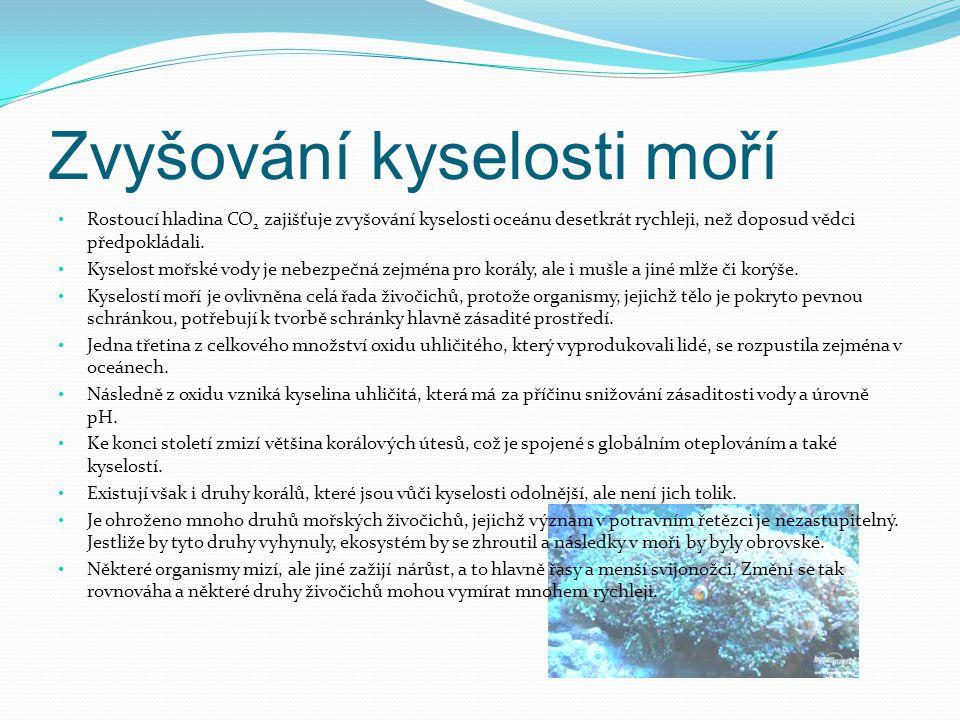 Zvyšování kyselosti moří