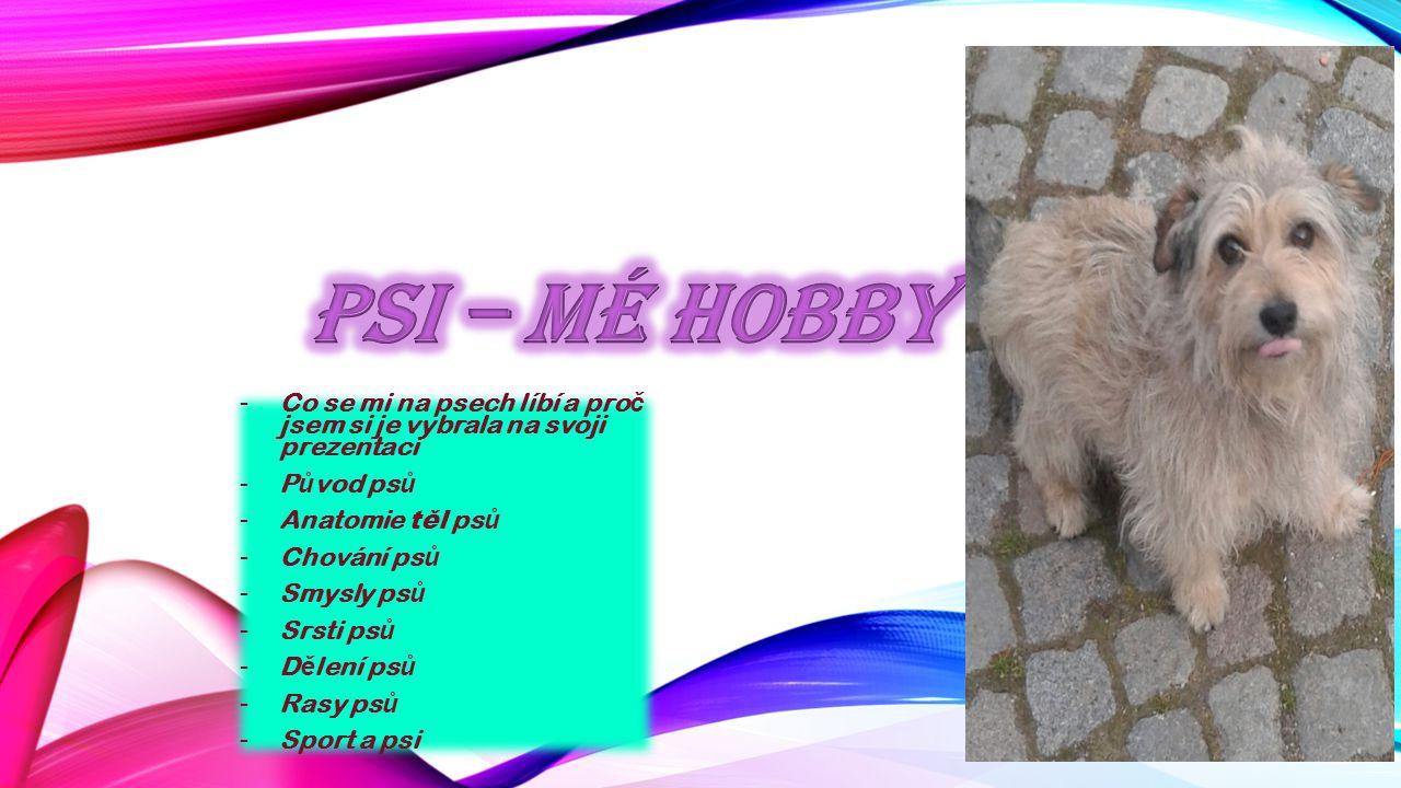 Psi – Mé hobby Co se mi na psech líbí a proč jsem si je vybrala na svoji prezentaci. Původ psů. Anatomie těl psů.