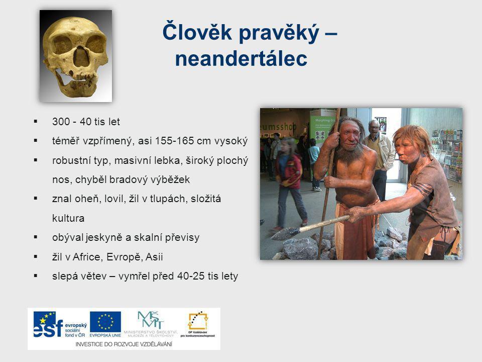 Člověk pravěký – neandertálec