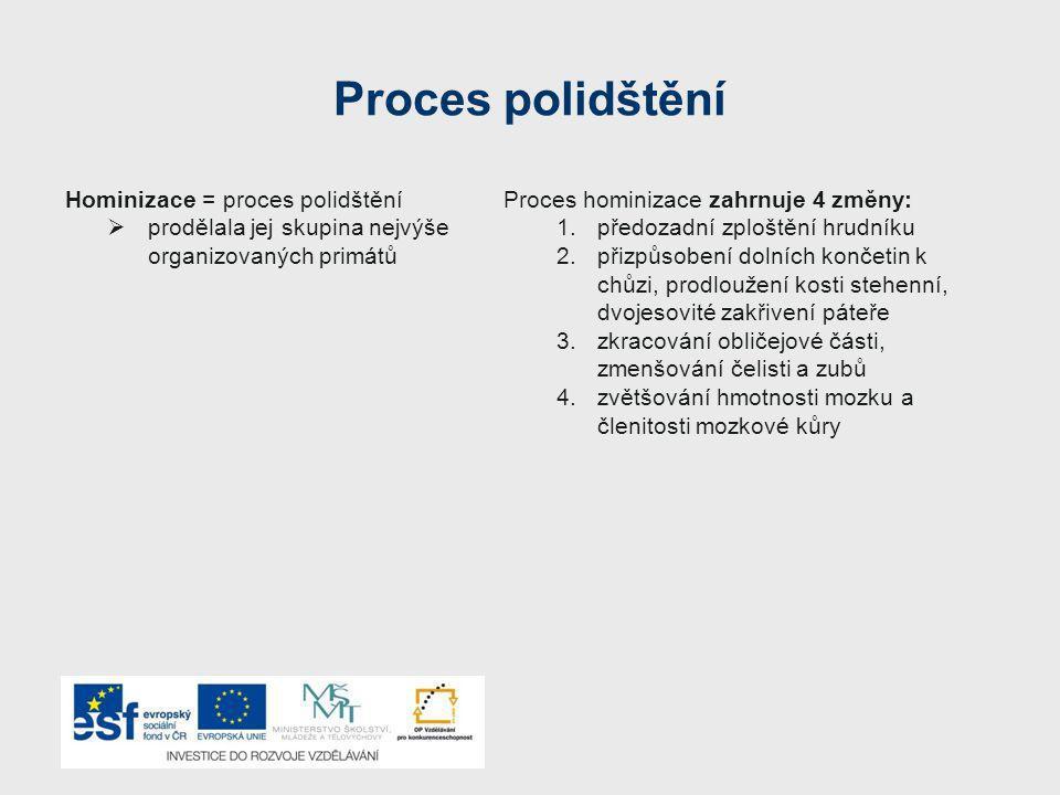 Proces polidštění Hominizace = proces polidštění