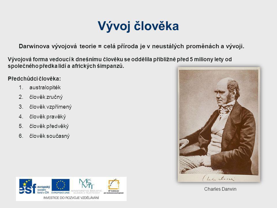 Vývoj člověka Darwinova vývojová teorie = celá příroda je v neustálých proměnách a vývoji.