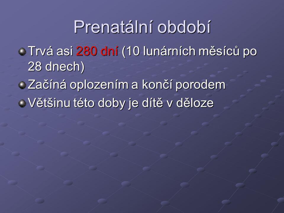 Prenatální období Trvá asi 280 dní (10 lunárních měsíců po 28 dnech)