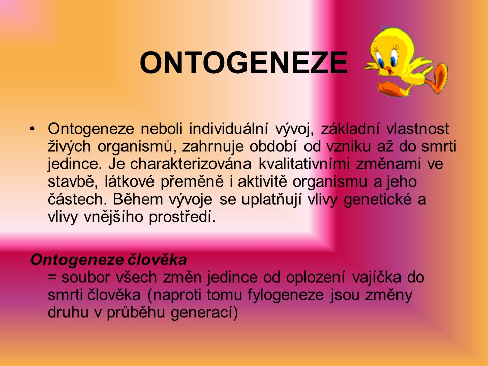 ONTOGENEZE