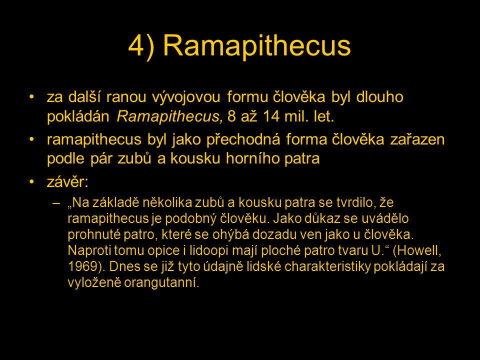 4) Ramapithecus za další ranou vývojovou formu člověka byl dlouho pokládán Ramapithecus, 8 až 14 mil. let.