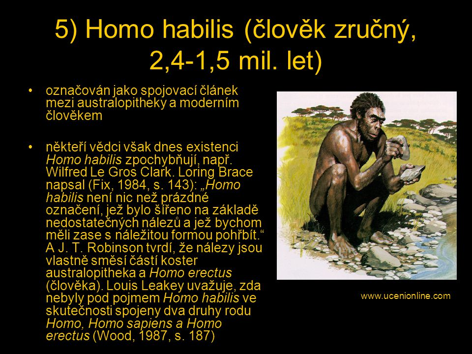 5) Homo habilis (člověk zručný, 2,4-1,5 mil. let)
