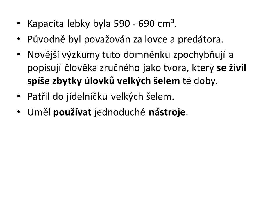 Kapacita lebky byla 590 - 690 cm³.