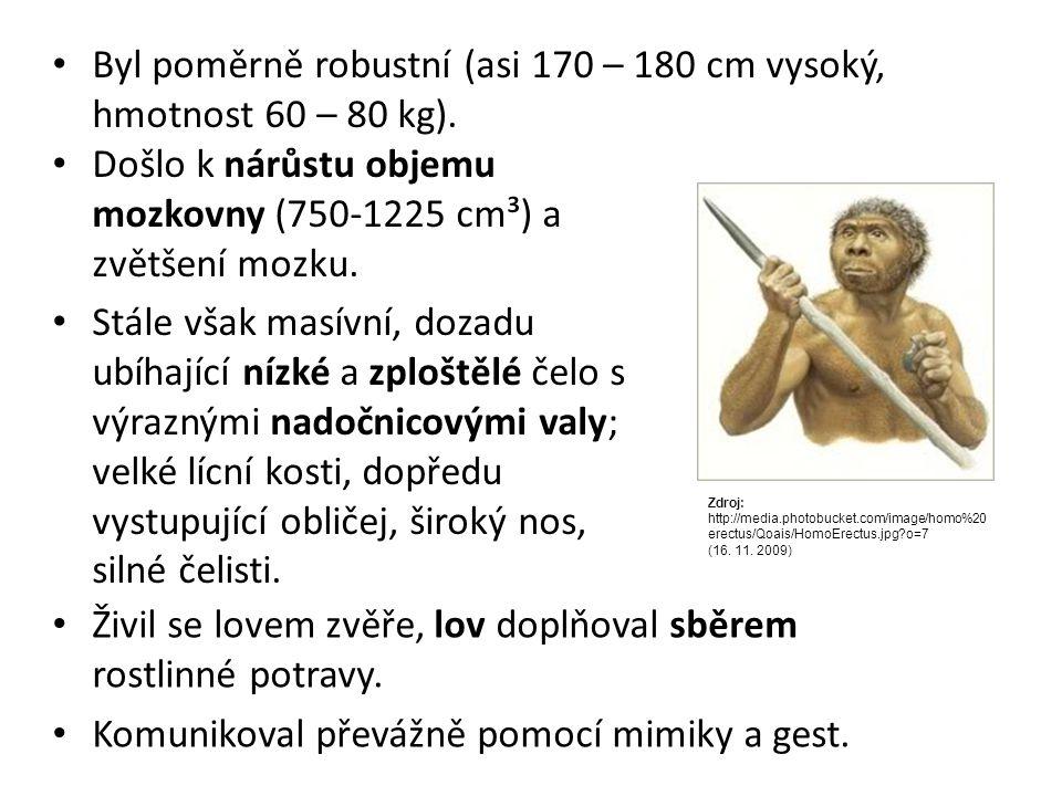 Byl poměrně robustní (asi 170 – 180 cm vysoký, hmotnost 60 – 80 kg).