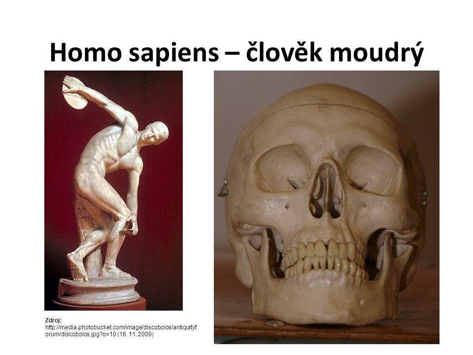 Homo sapiens – člověk moudrý