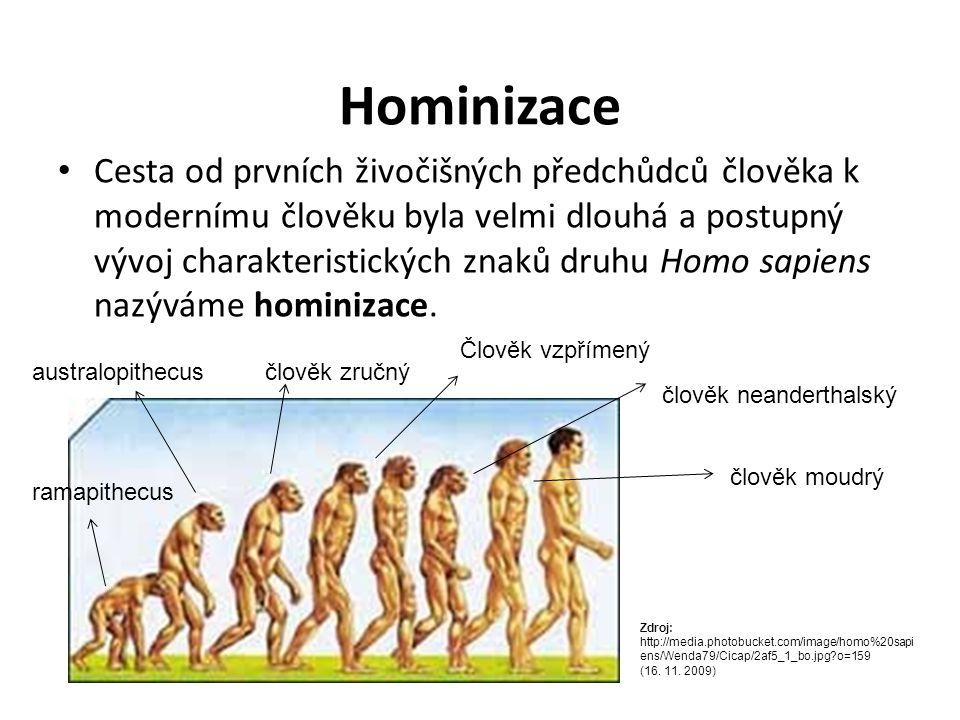 Hominizace