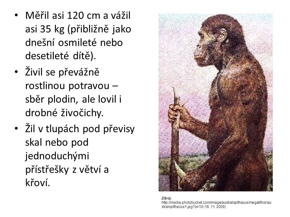 Měřil asi 120 cm a vážil asi 35 kg (přibližně jako dnešní osmileté nebo desetileté dítě).