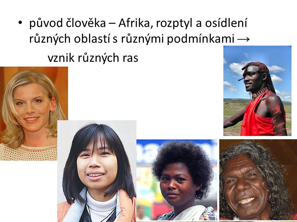 původ člověka – Afrika, rozptyl a osídlení různých oblastí s různými podmínkami →