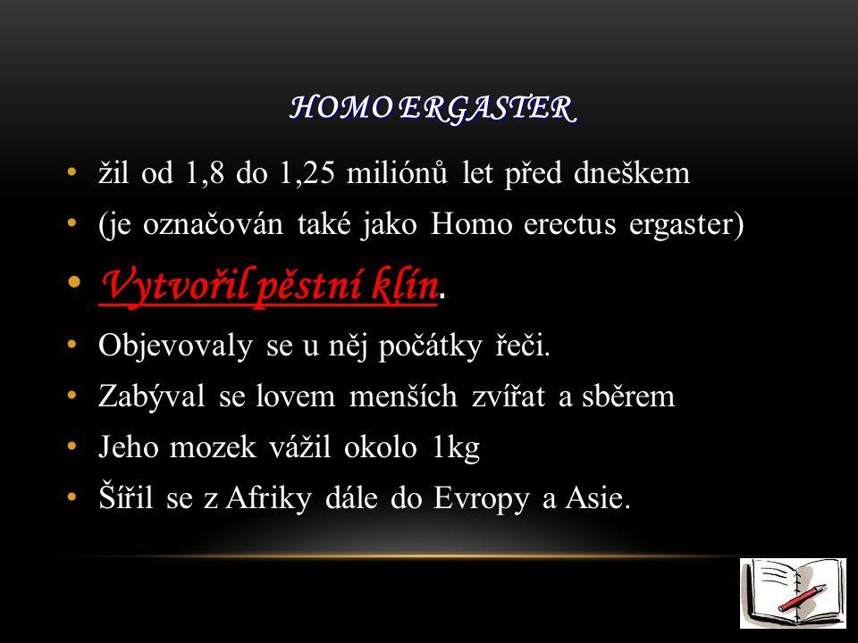 Vytvořil pěstní klín. Homo ergaster