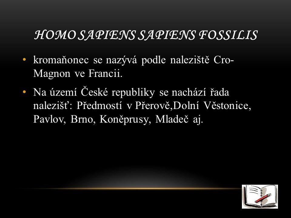 Homo sapiens sapiens fossilis