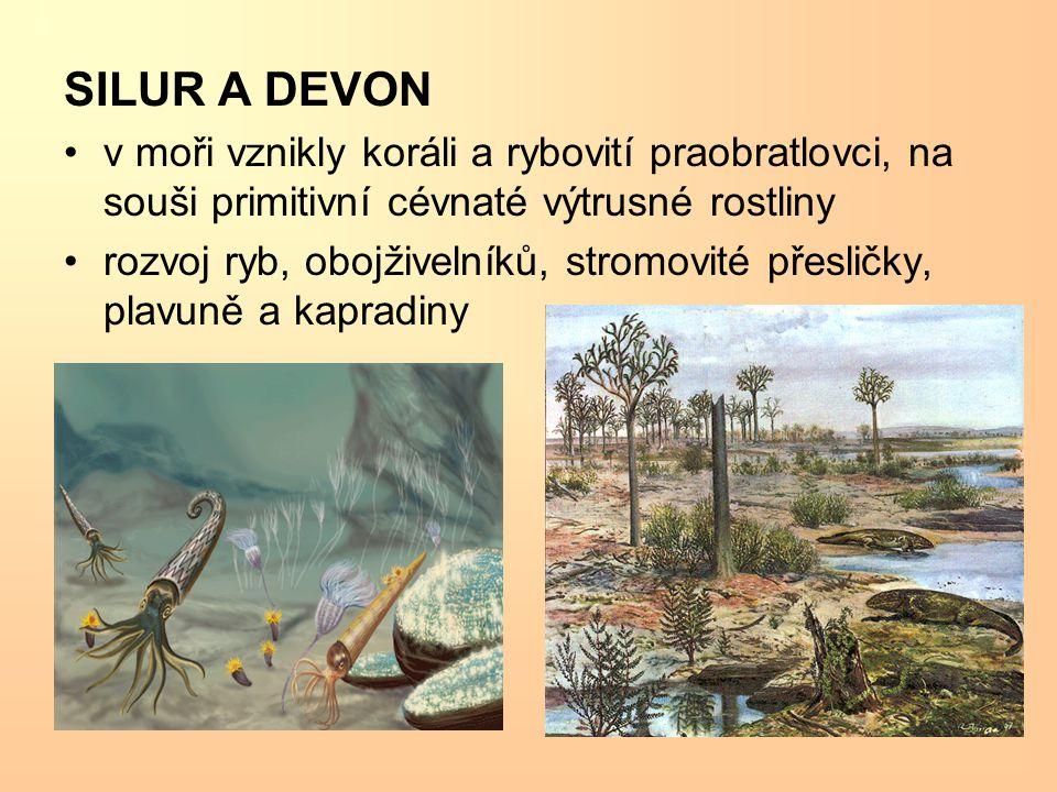 SILUR A DEVON v moři vznikly koráli a rybovití praobratlovci, na souši primitivní cévnaté výtrusné rostliny.