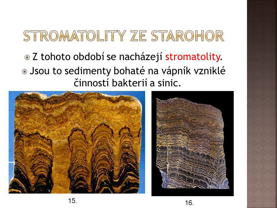 Stromatolity ze starohor