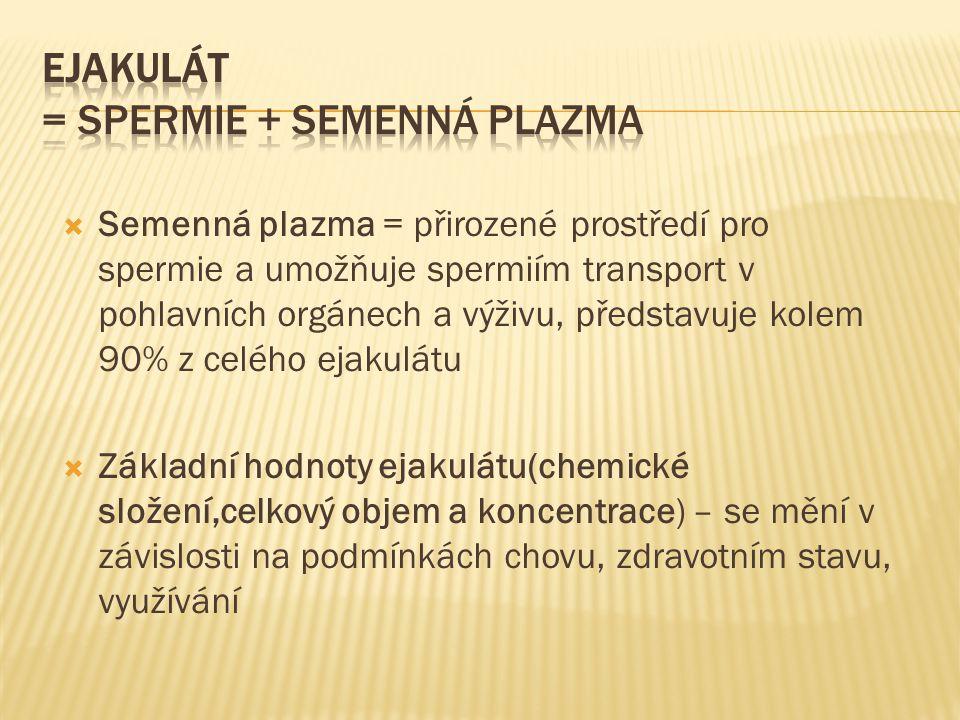 Ejakulát = spermie + semenná plazma