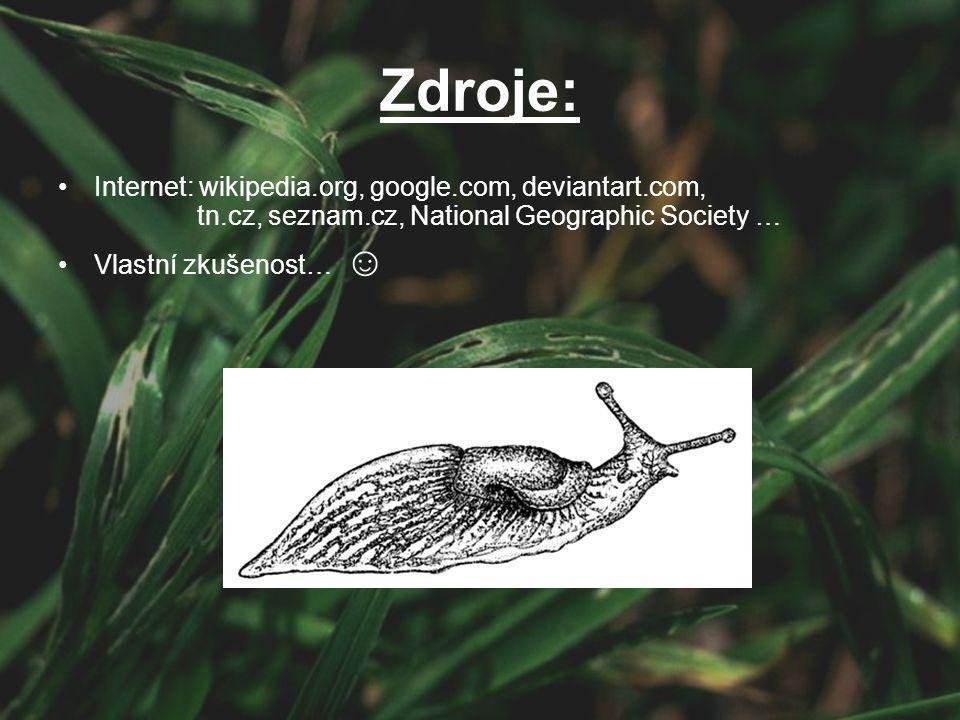 Zdroje: Internet: wikipedia.org, google.com, deviantart.com, tn.cz, seznam.cz, National Geographic Society …
