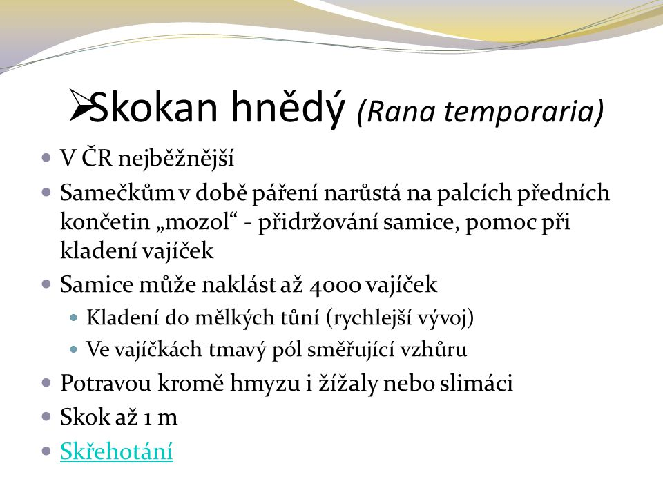 Skokan hnědý (Rana temporaria)